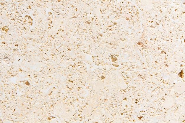 Coquilles de pierre de texture fossile