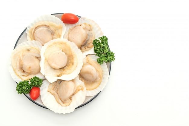 Coquilles saint-jacques fraîches