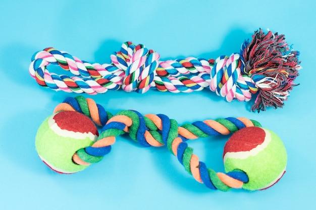 Corde pour morsure dans les fournitures pour animaux de compagnie de concept sur fond bleu