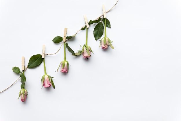 Corde avec des roses