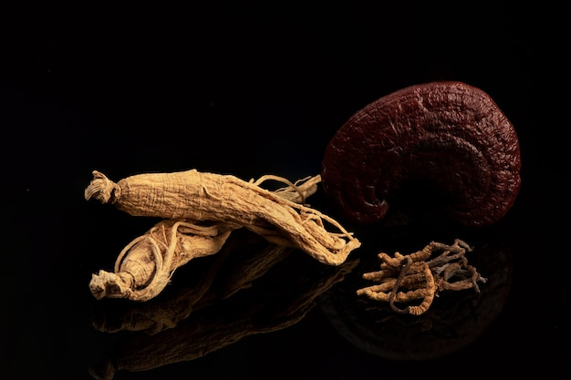 Cordyceps sinensis, reishi, champignon lingzhi et ginseng sur fond noir