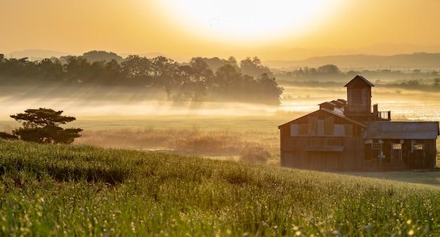 Corée du sud jusqu'au lever du soleil à anseong farmland: éclair et brouillard