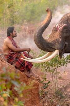 Le cornac est assis avec l'éléphant.