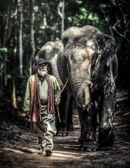 Un cornac marchant avec son éléphant pour rentrer chez lui après le bain de son éléphant dans un lac local