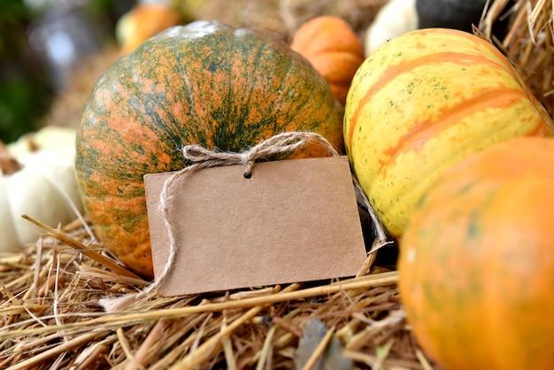 Corne d'abondance des récoltes d'automne. citrouille en automne. pour l'événement de décoration de thanksgiving et d'halloween.