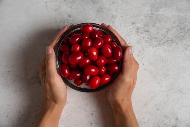 Cornels rouges dans la coupe en verre dans la main d'une personne.