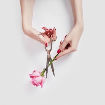 Cosmétique pour les mains beauté naturelle avec extrait de fleur