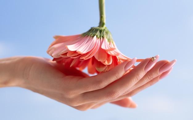 Cosmétiques naturels pour les mains, salon de beauté et spa de luxe, concept de manucure et de massage