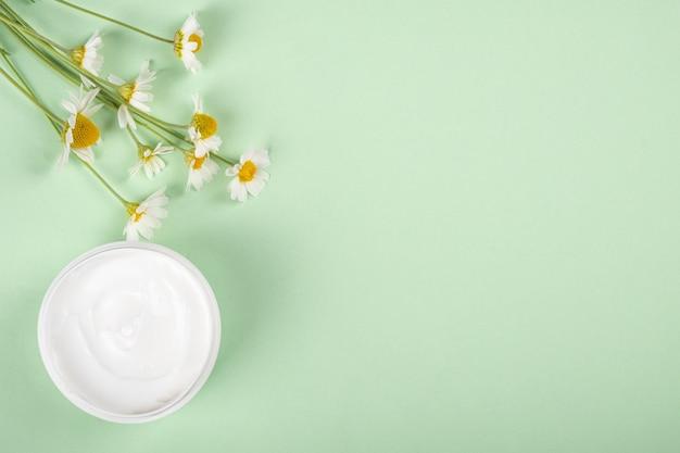 Cosmétiques pour les soins de la peau cosmétiques biologiques à base d'herbes médicinales à plat avec espace de copie
