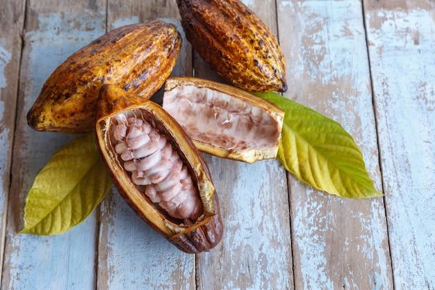 Cosses de cacao frais et feuilles de cacao sur fond de bois