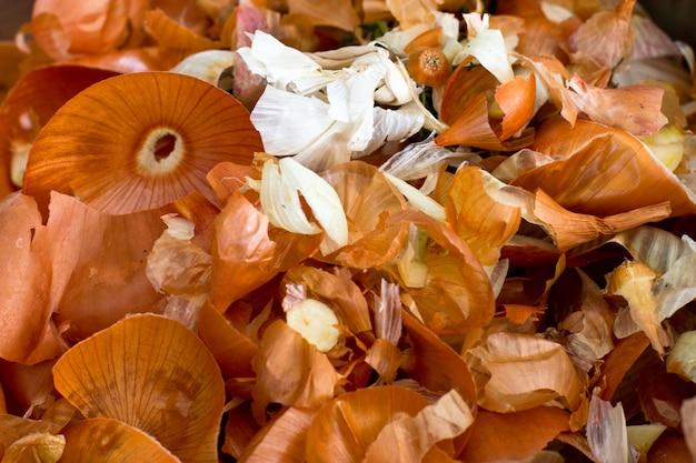 Cosses d'oignon brun. coloriage des oeufs pour pâques. macro