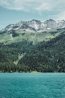 La côte du lac turquoise bascule l'herbe et la forêt dans les montagnes des alpes suisses