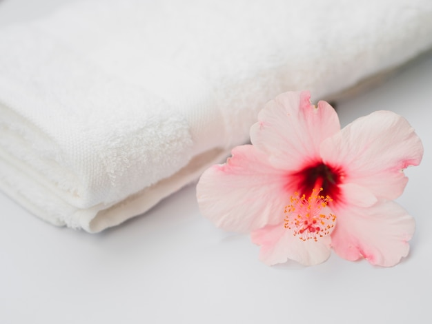 Côté de la fleur à côté d'une serviette