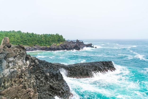 Côte jungmun daepo falaise jusangjeolli, île de jeju