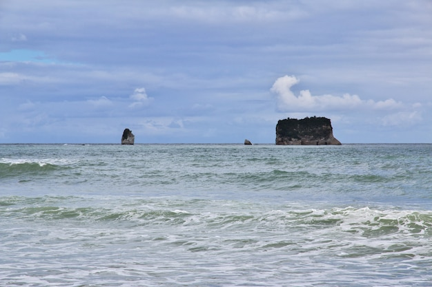 Côte ouest de l'île du sud, nouvelle-zélande
