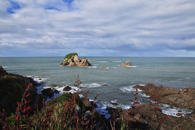 La côte ouest de l'île du sud, nouvelle zélande