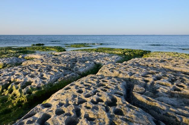 Côte rocheuse de la mer caspienne couverte d'algues en été
