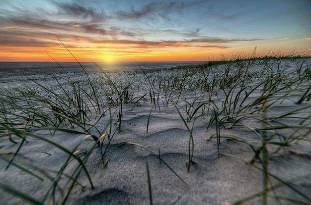 Côte de sable couverte dans l'herbe entourée par la mer pendant un beau coucher de soleil