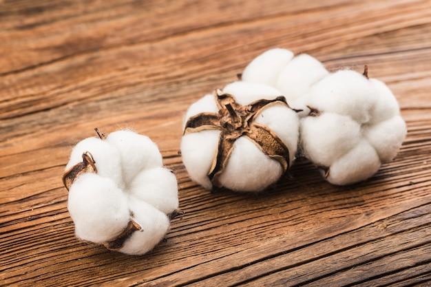 Coton sur fond de bois