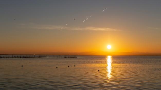 Coucher de soleil à albufera de valence avec des mouettes dans l'eau.