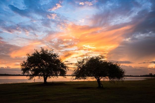 Coucher de soleil arbres paysage / le couple de deux arbres sur la rivière nuage coloré ciel