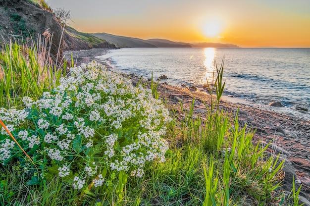Coucher de soleil sur le bord de mer, plage rocheuse et ciel bleu