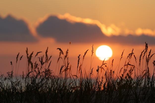 Coucher de soleil brûlant au bord de l'herbe sèche côtière sur le ciel coloré soirée d'été sur la côte de la mer ou du lac