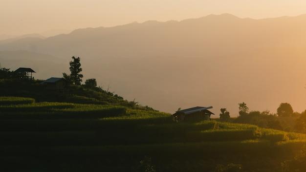 Coucher de soleil de champs en terrasse à chiang mai