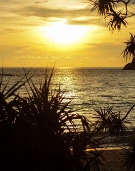 Coucher de soleil coloré sur une plage tropicale à travers les palmiers. endroit pour copier du texte.