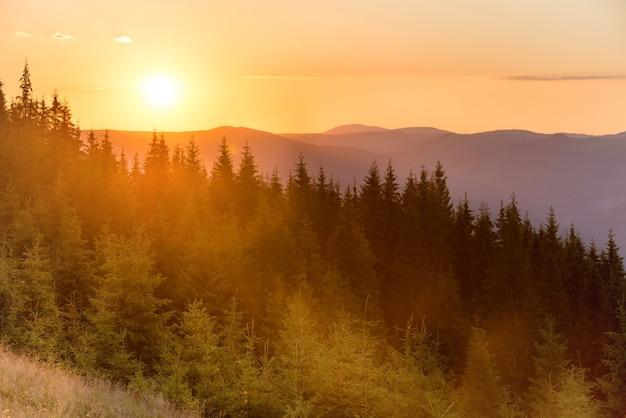 Coucher de soleil dans les montagnes avec forêt et grand soleil brillant sur un ciel dramatique
