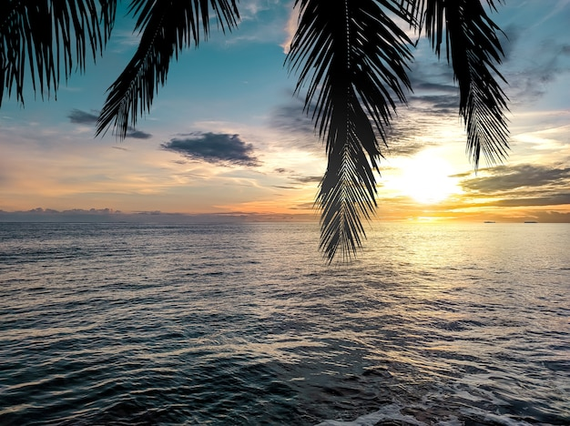 Coucher de soleil dans l'océan avec silhouette de palmier