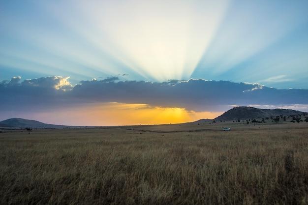 Coucher de soleil dans le parc national du masai mara, animaux sauvages dans la savane. kenya