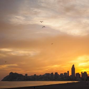 Coucher de soleil doré sur la plage de poniente à benidorm, espagne