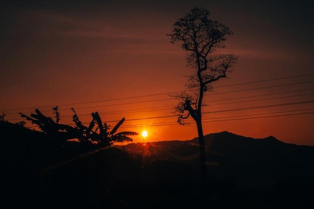 Coucher de soleil été orange