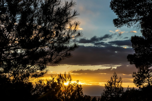Coucher de soleil un jour avec des nuages et des rayons de soleil parmi les pins de la montagne.