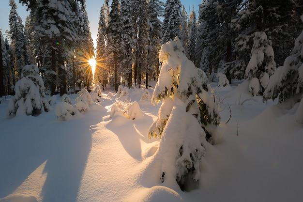 Coucher de soleil majestueux dans le paysage de montagne en hiver