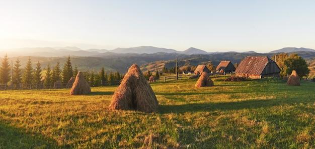 Coucher de soleil majestueux dans le paysage de montagnes. carpates, ukraine