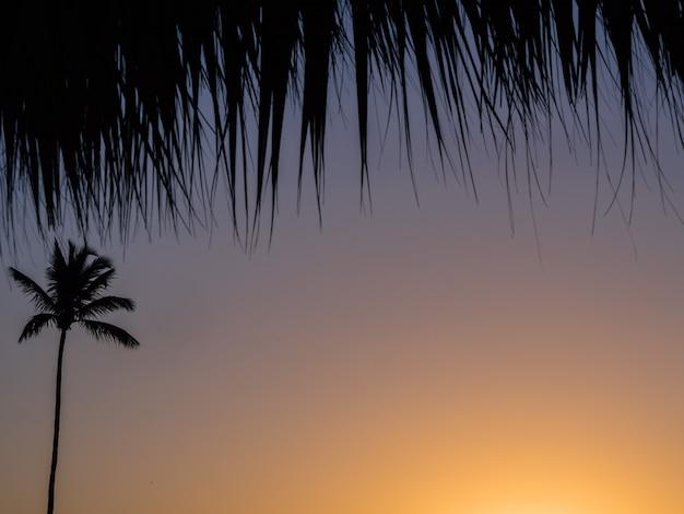Coucher de soleil nature paysage tropical fond conception voyage vacances.