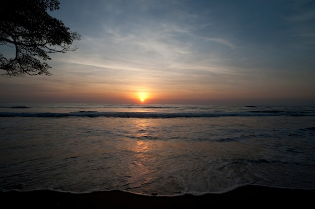 Coucher de soleil sur l'océan calme au costa rica avec des branches d'arbres dans la partie gauche du cadre
