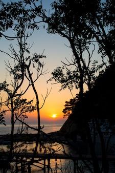Le coucher de soleil orange sur la mer est visible à travers les contours sombres des arbres et des buissons au premier plan