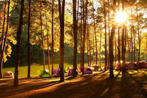 Coucher de soleil à pang-ung, forêt de pins à mae hong son, thaïlande