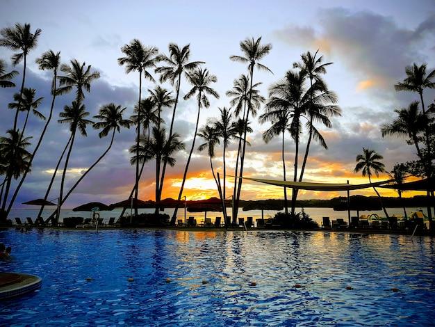 Coucher de soleil paradis arbre palmier à fidji