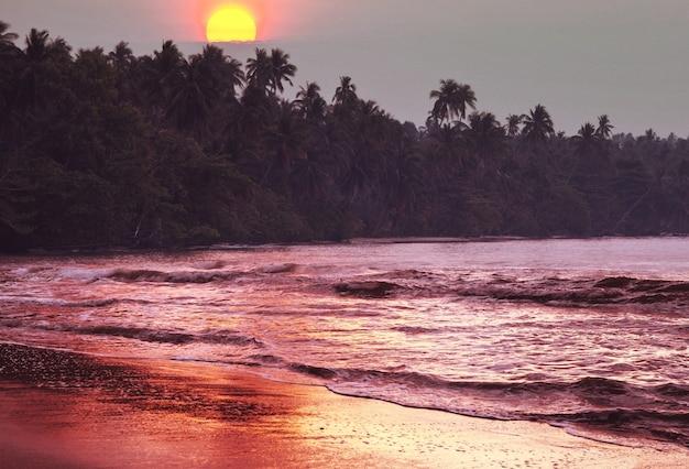 Coucher de soleil sérénité sur la plage tropicale