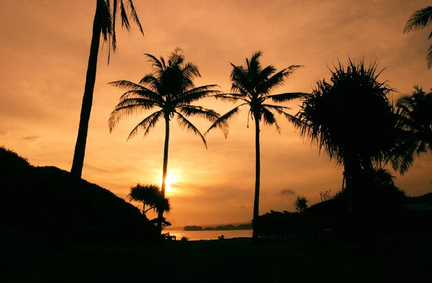 Coucher de soleil à srau beach pacitan