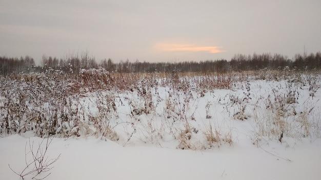 Coucher de soleil sur le terrain en hiver