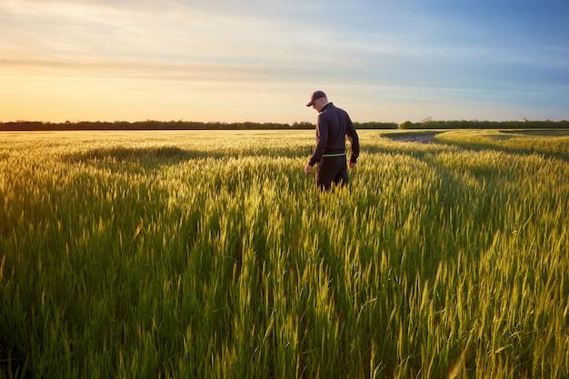 Coucher de soleil sur le terrain, un homme debout sur le terrain rencontre le coucher de soleil