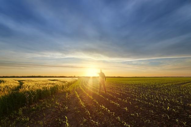 Coucher de soleil sur le terrain, un homme tenant le soleil dans sa main