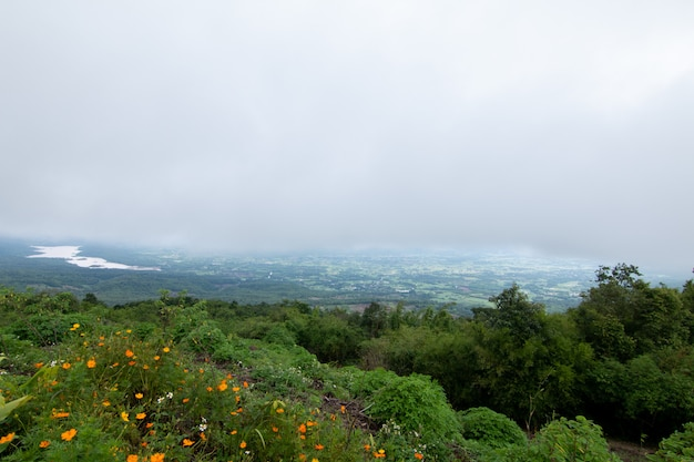 Coudy dark day avec brouillard sur les montagnes