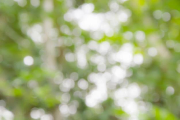 Couleur verte abstraite avec une lumière brillante pour un fond naturel