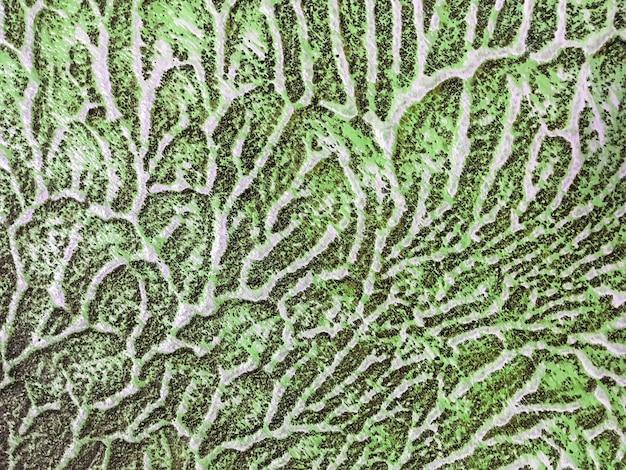 Couleur verte et blanche de fond d'art abstrait.